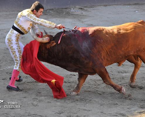 Azpeitia Toro Cultura