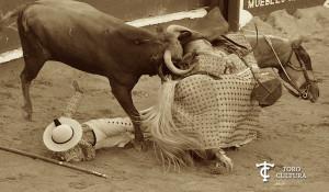 Tito Sandoval y toro de Pedraza de Yeltes