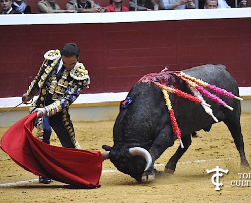El Cid y Planteadito en Logroño
