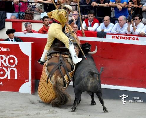 toro ana romero