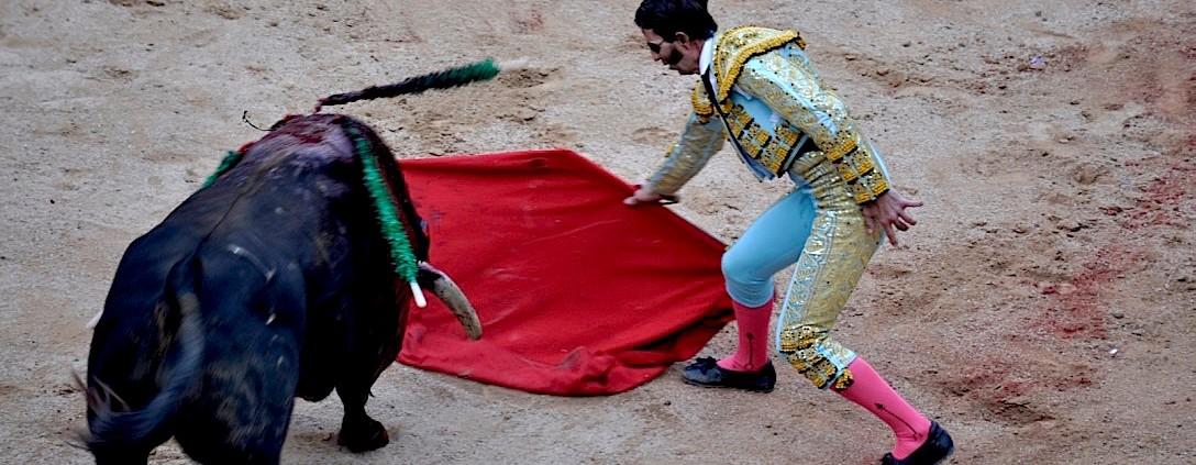 Padilla en Pamplona con uno de Fuente Ymbro