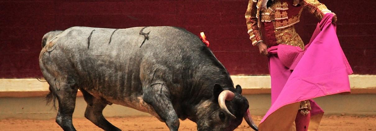 torero leo valadez